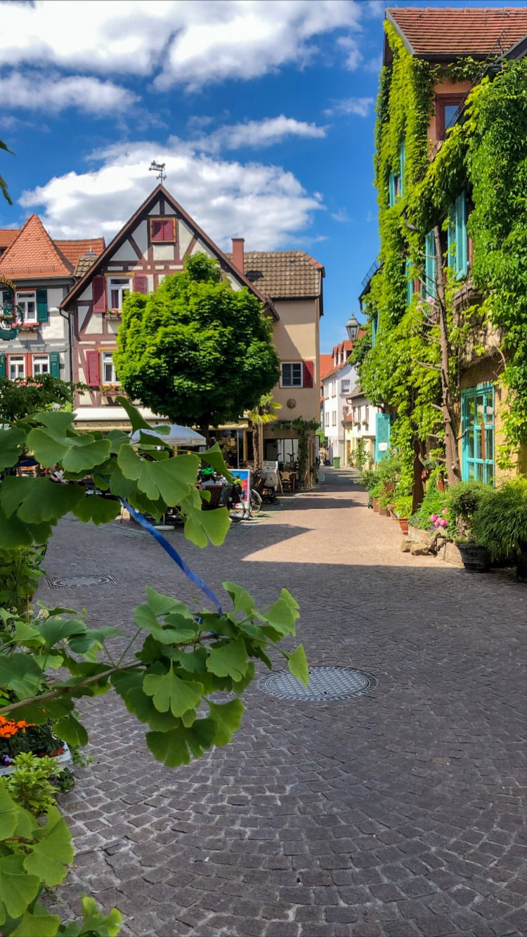 Germany travel Besigheim